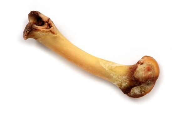 Kemik