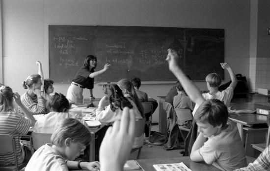 Pedagoloji