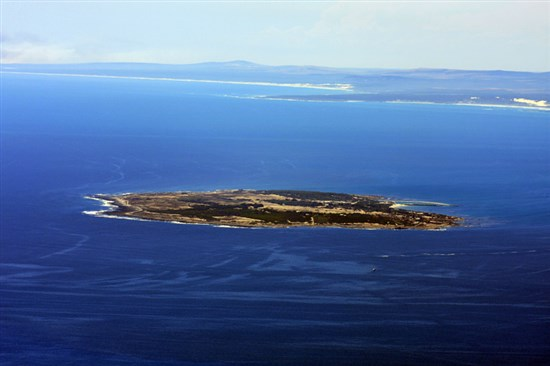 Robben Adasi