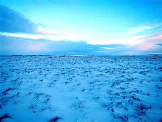 Tundra Toprak